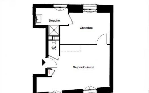 69008 LYON appartement neuf T2 DHG CONSEIL